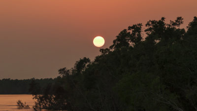 A wonderful sunset @ Natural mangrove forest Sundarbans , Khulna . November-2018